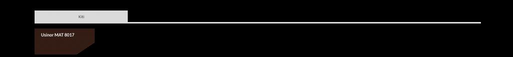 Skardinis stogas Germania Simetric